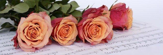 roses-2366341_640.jpg